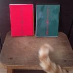 「ノルウェイの森」の緑と赤の謎