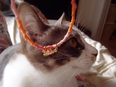 猫の首輪_1