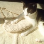 可愛いすぎるネコ型のバッグがついにやって来た♪