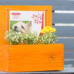 ペットの手元供養 お花が育てられるペットのお墓「OHANA」