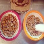 ネコと飼い主が一緒に食べられるご飯「高級猫飯」