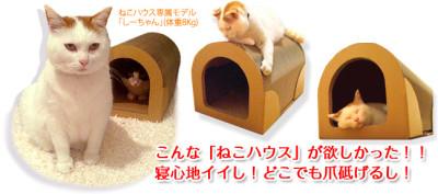 nekohouse_image_top
